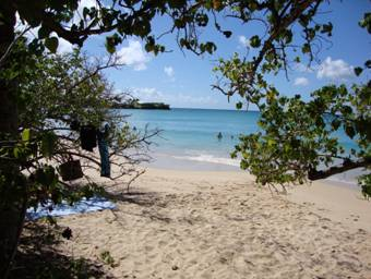 Martinique 012  209